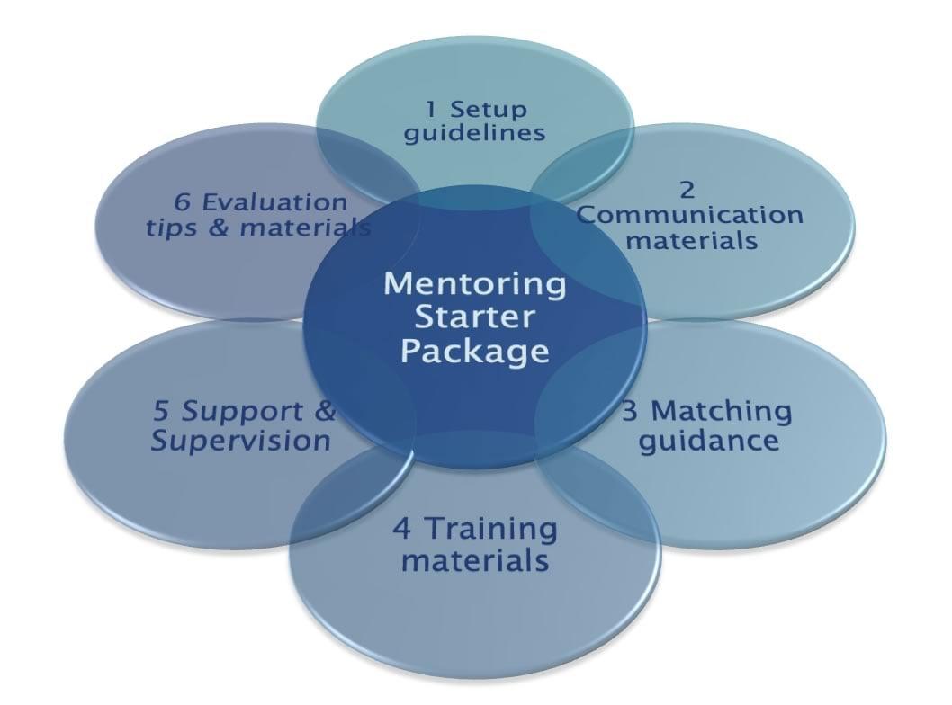 Mentoring Starter Package - Black Friday