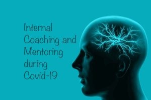 Internal Coaching & Mentoring