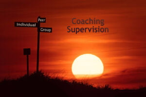 Peer, Group, Individual Coaching Supervision Formats